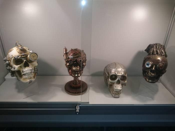 Музей Черепов и Скелетов/Дружественная встреча с Художественным МУзеем МУсора «МУ МУ»