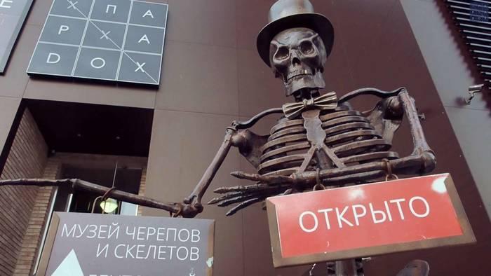 Музей Черепов и Скелетов/Новое время работы Музея Черепов и Скелетов