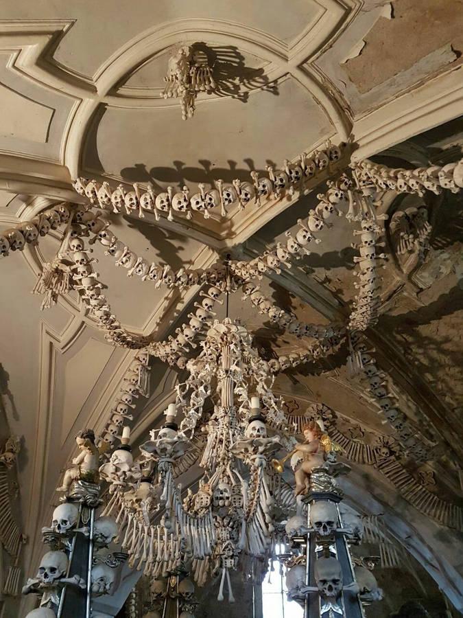 Музей Черепов и Скелетов/Прямиком из Костницы (Чехия) — в Музей Черепов и Скелетов