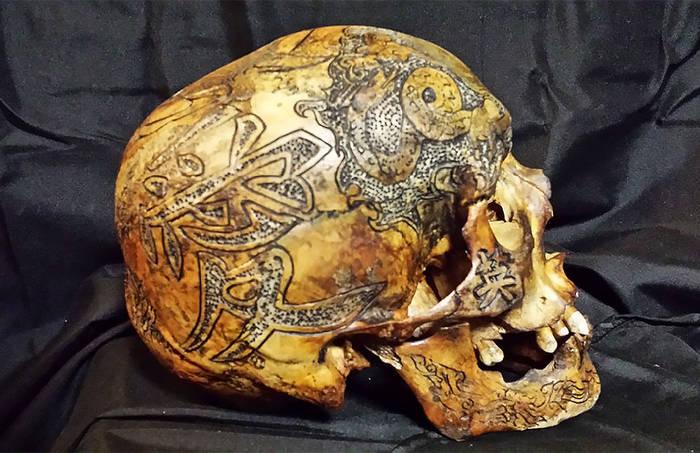Музей Черепов и Скелетов/Страшно красиво